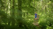 outdoor wandern freiburg wald